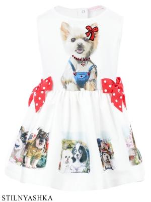 Платье ПЛ-13179-78 Собачки